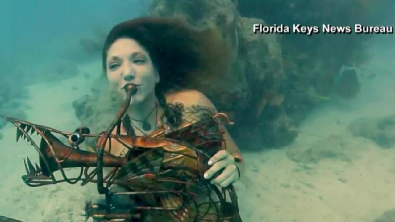 wptv-underwater-music-festival.jpg