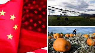 Ag Report: Trade War, Farm Irrigation, Pumpk
