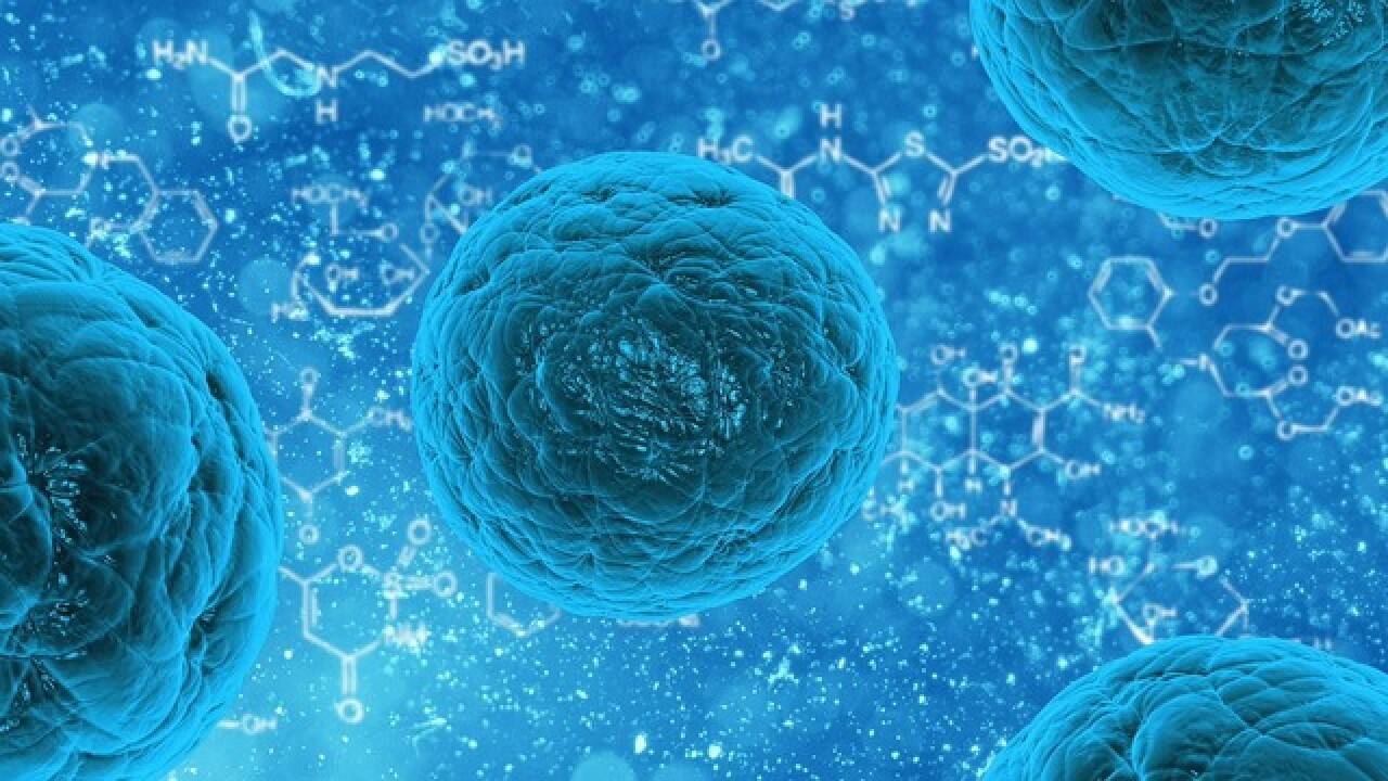 Are Florida clinics overselling stem cells?