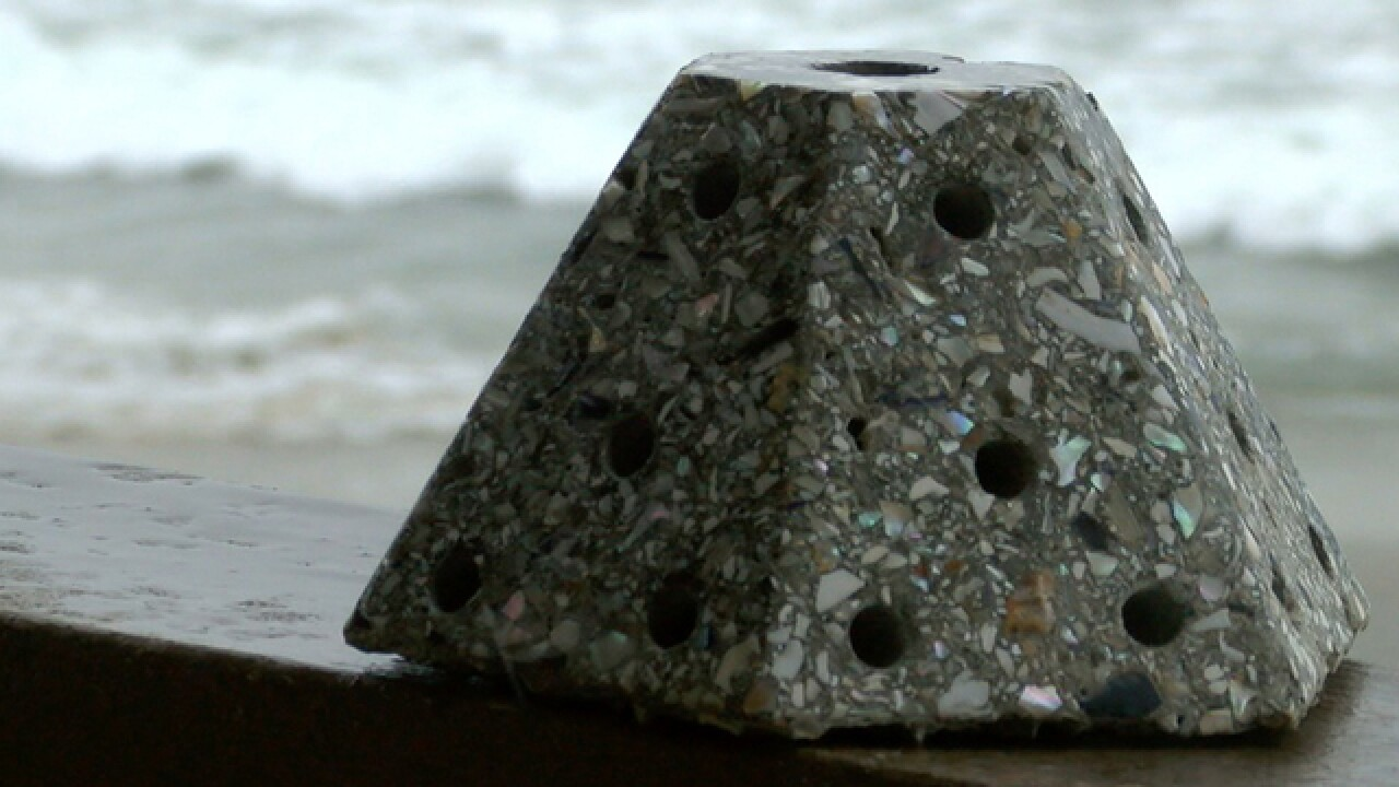 Cremated remains used in underwater memorials
