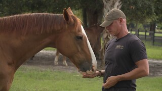 ARM founder Richard Couto with horse