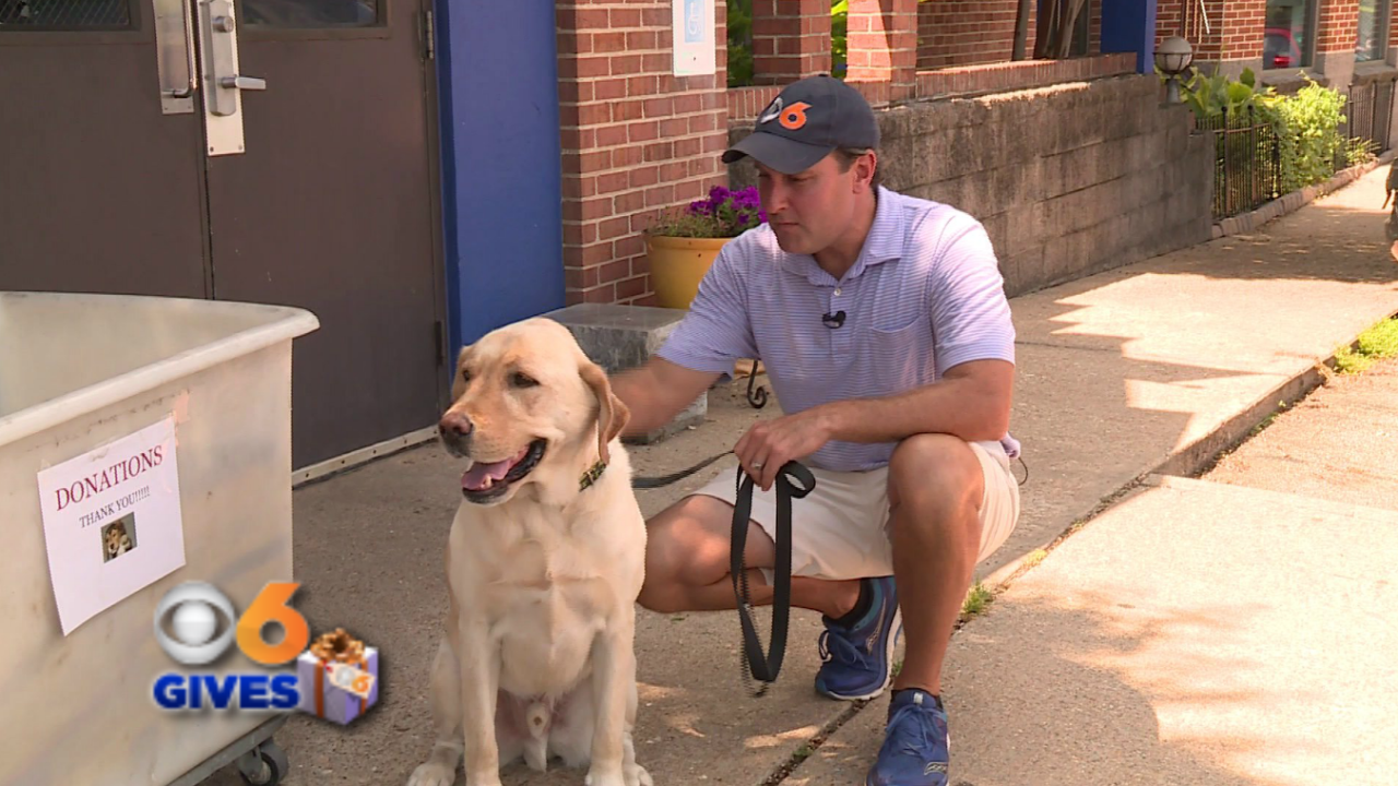 Walter the weather dog and Zach Daniel helps shelter pets inneed