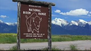 Senators introduce Flathead Water Bill, including Bison Range changes