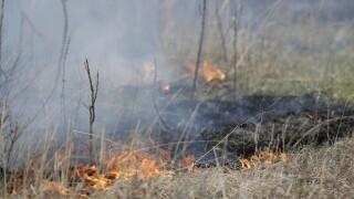 Virus Outbreak Burning Prairie