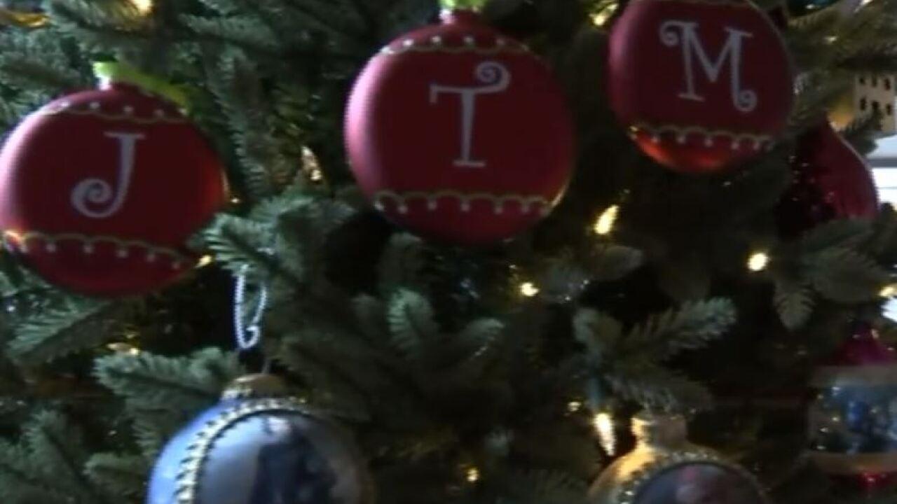 wptv christmas tree bugs.JPG