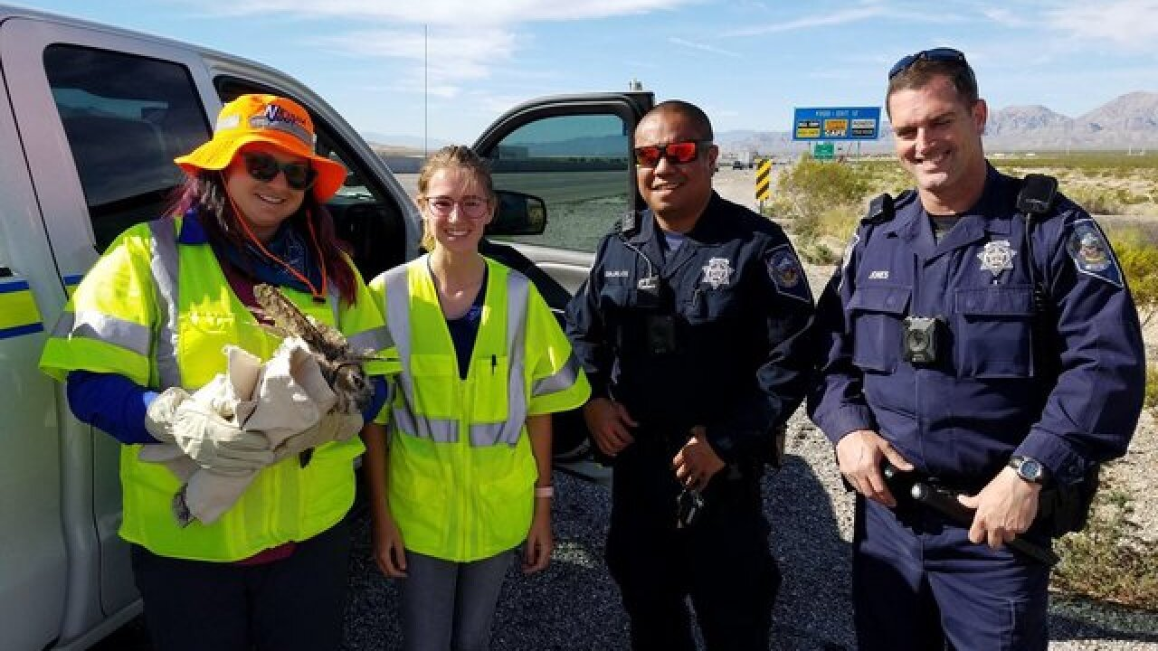 Owl saved by Nevada Highway Patrol troopers