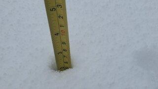 Snowfall totals in Parma