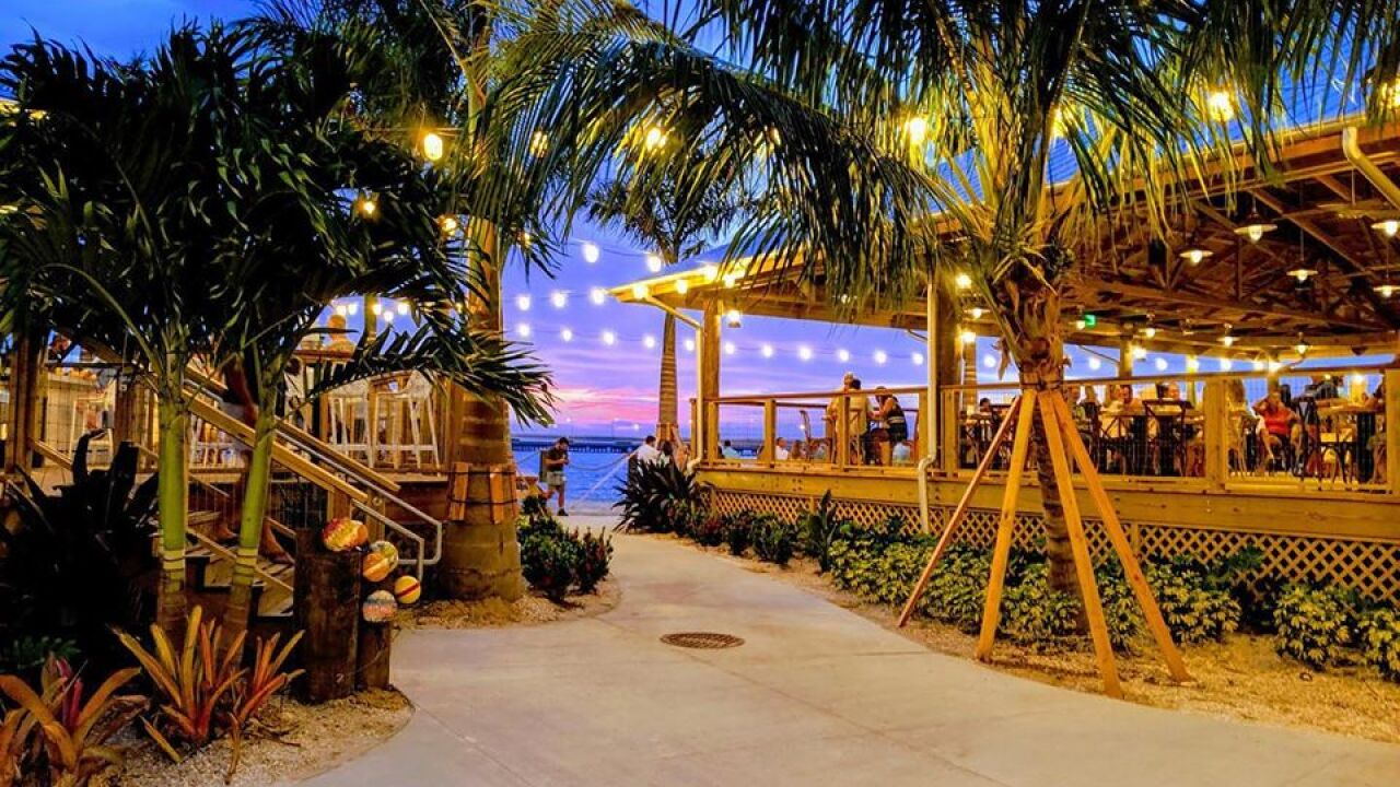 Celebrate New Year's Eve in South Tampa at Salt Shack on ...