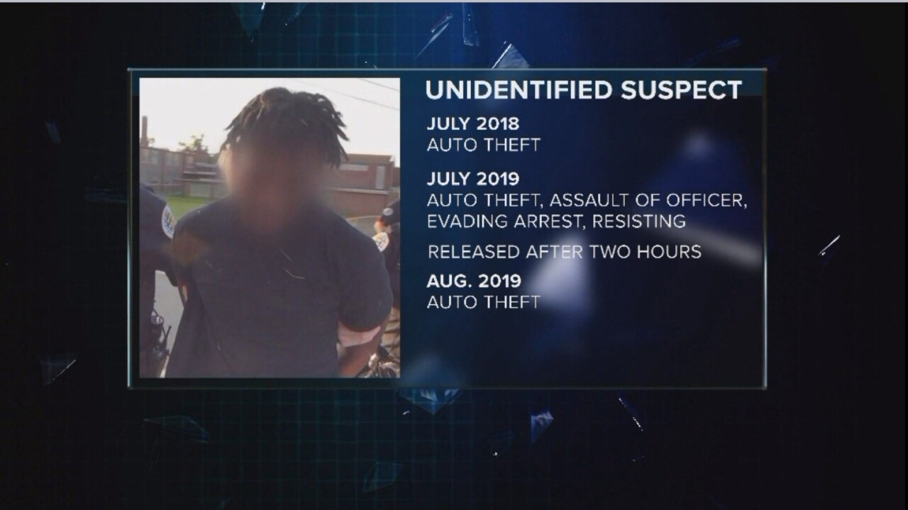 Auto Theft Suspect graphic.jpg