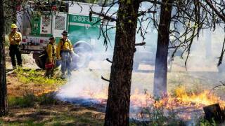 Idaho's Risch co-authors bill to speed up tactics that prevent wildfires in the West
