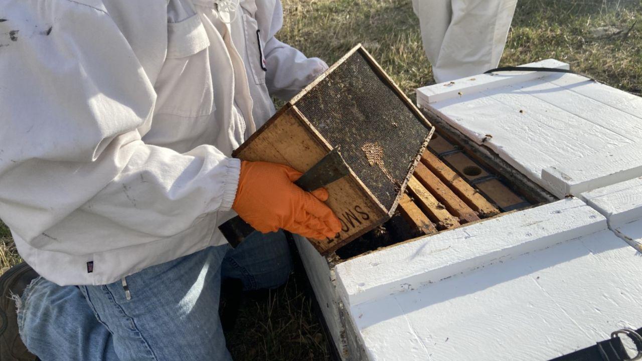 Smoot Honey Company in Power