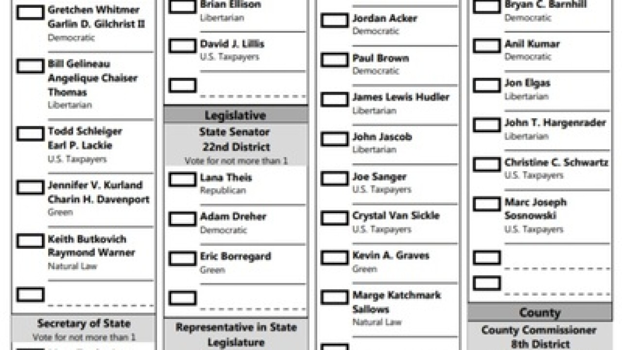 Hamburg Township Sample Ballot