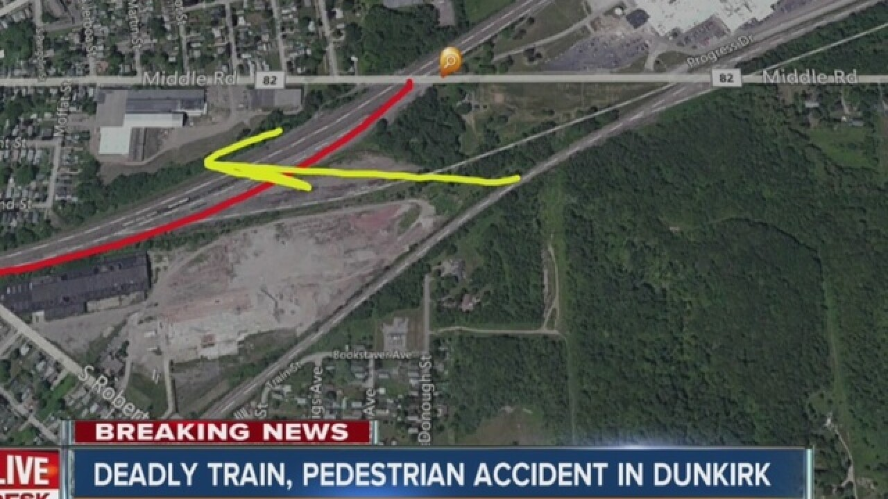 Woman hit by train while trying to save her dog