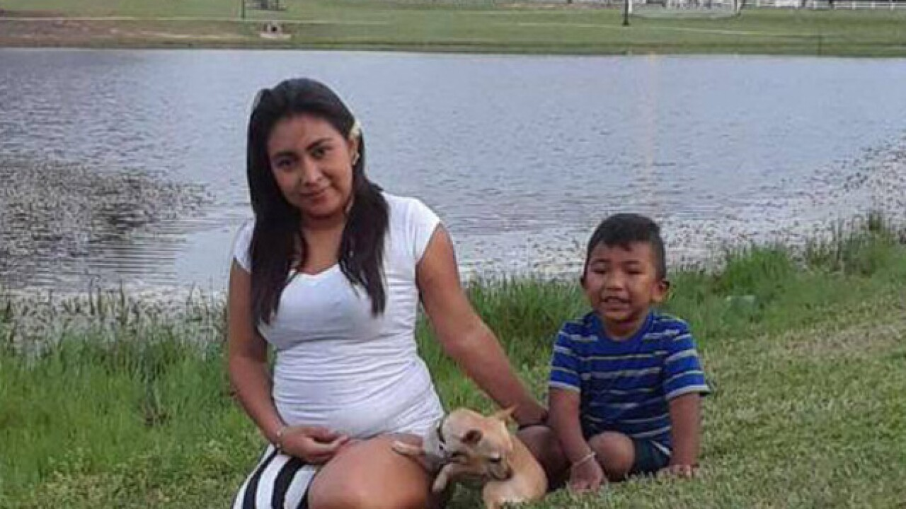 Pregnant mother and 3-year-old son deported