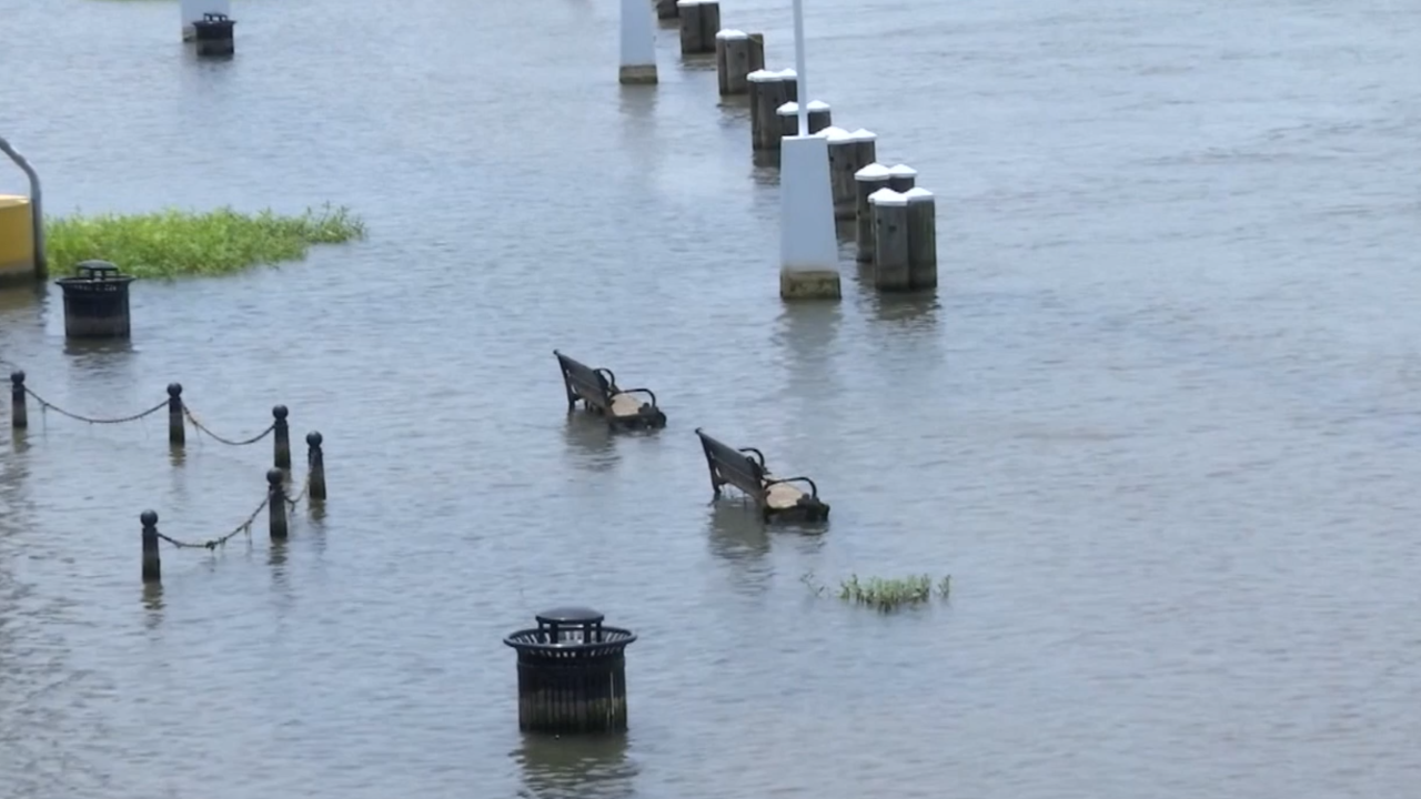 Flood gates close in New Orleans as city preps for heavy rainfall as Barry moves in