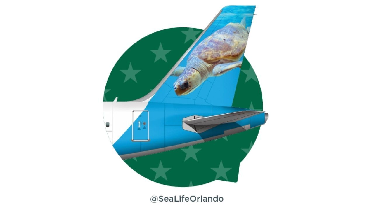 frontier airlines ted.jpg