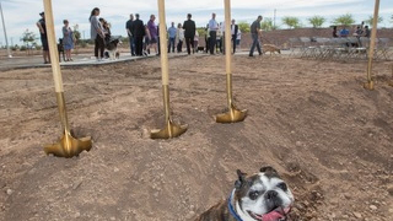 3 new dog parks to open at Cadence this summer