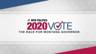 2020 vote gov slate.jpg