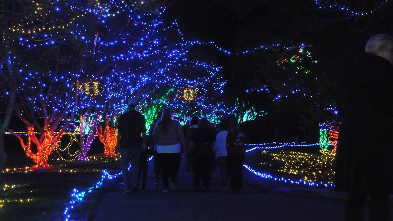 Tickets now on sale for Norfolk Botanical Garden's Million Bulb Walk