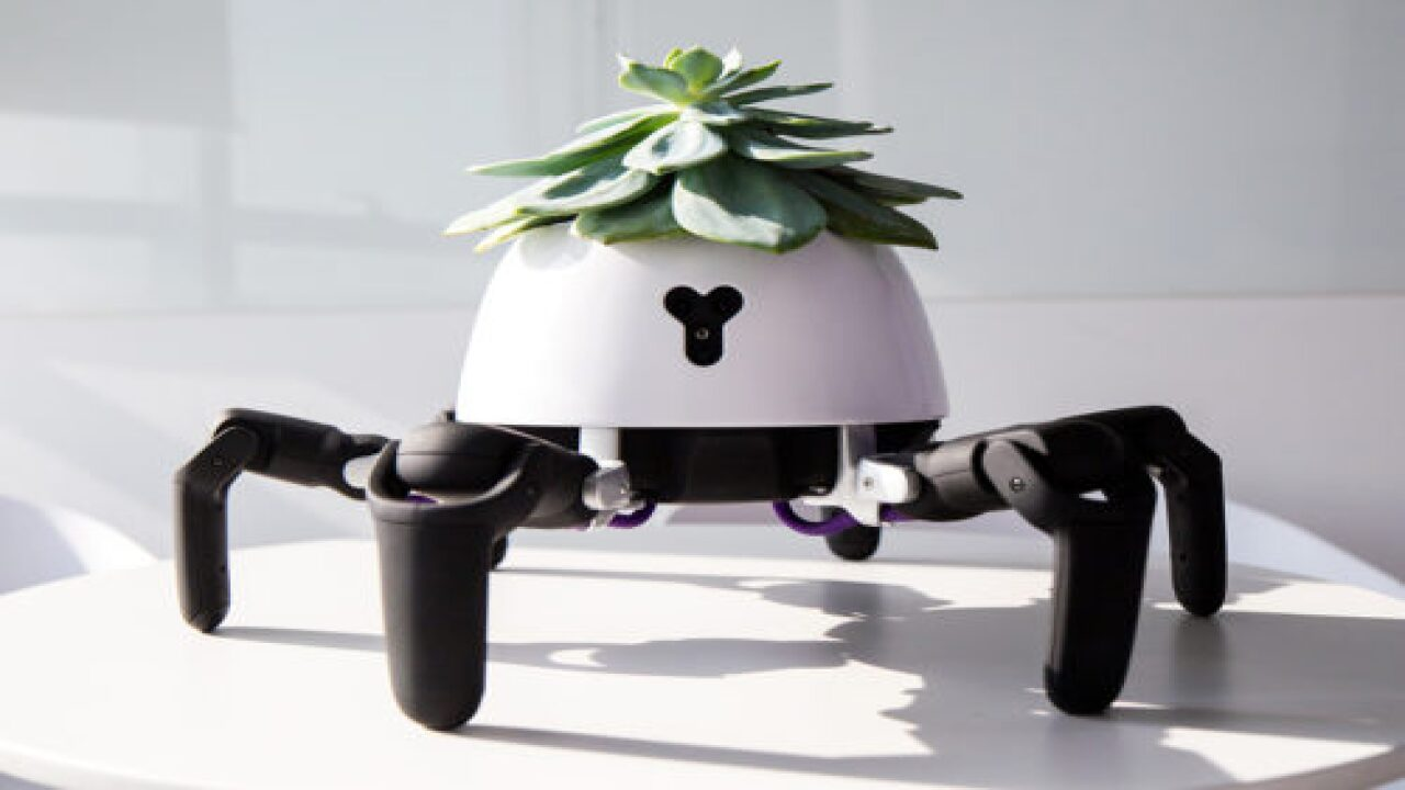 This Robot Chases The Sun Around To Keep Your Plant Happy