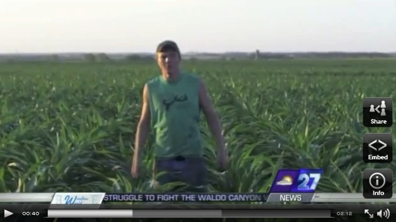 Viral Video: Farmers' version of 'Sexy and I Know It'