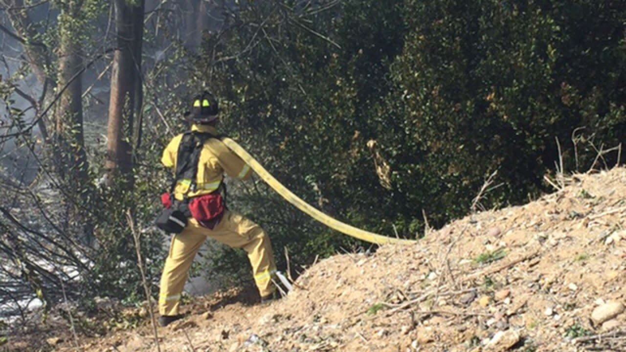 Brush fire erupts in Chollas View area