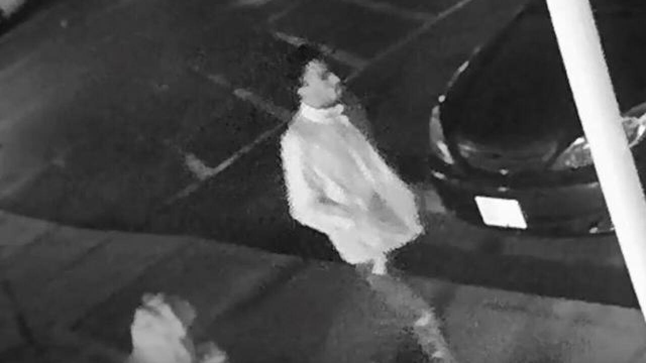 Man found shot dead at apartment complex