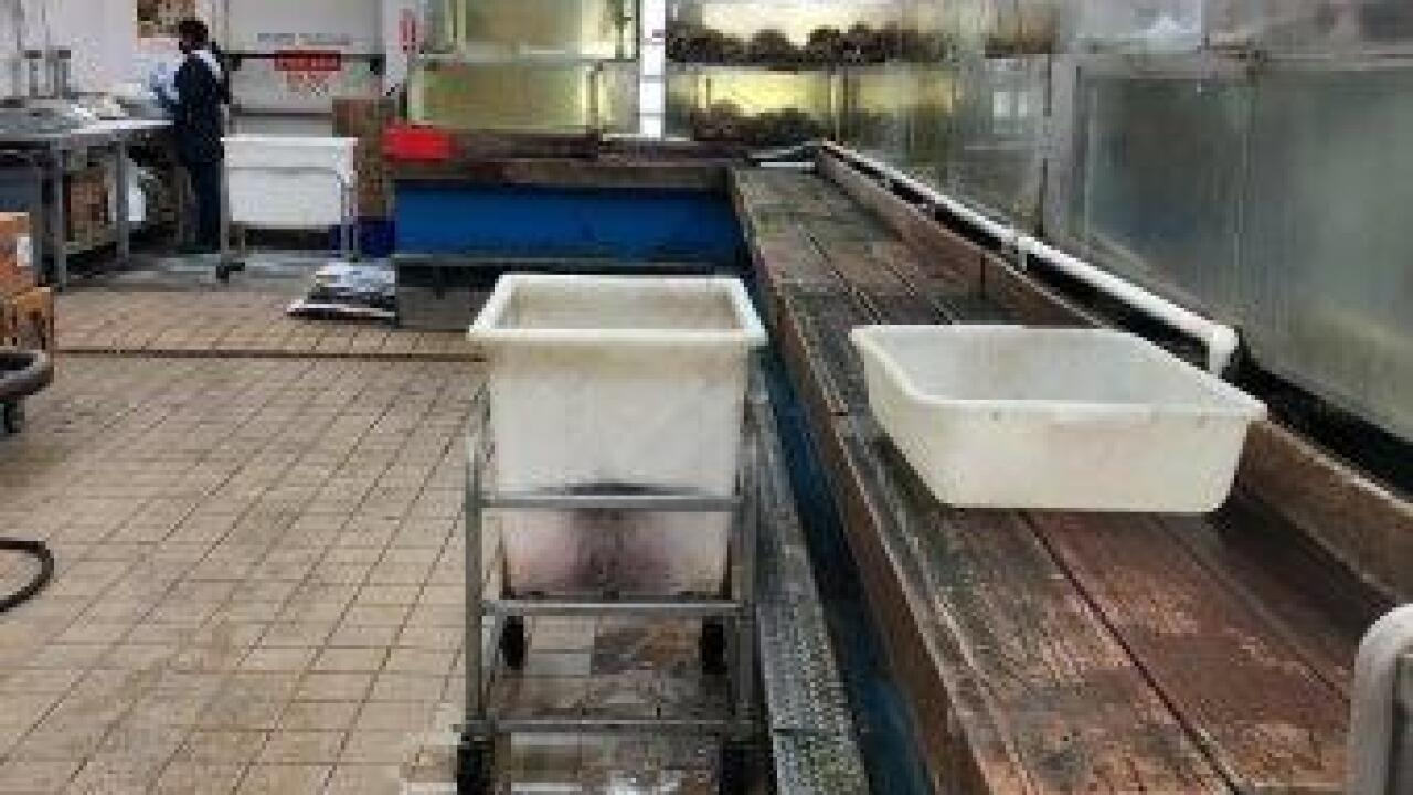 PR0022230 Las Vegas Superstore Seafood closure 916 (7).jpg