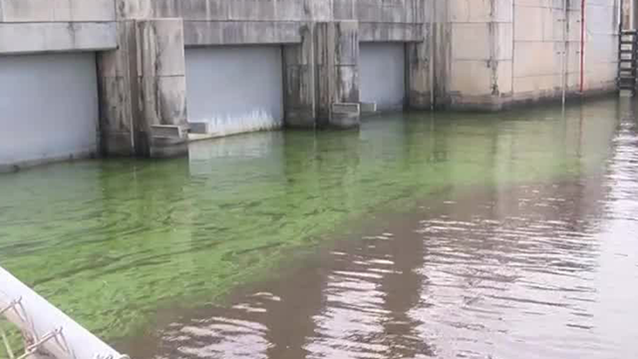 Army Corps of Engineers, SFWMD present plans for storing water underground to prevent algae blooms