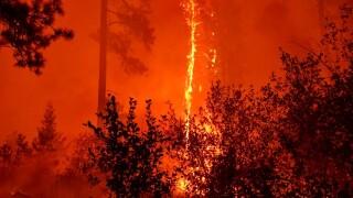 woodheadfire.jpg