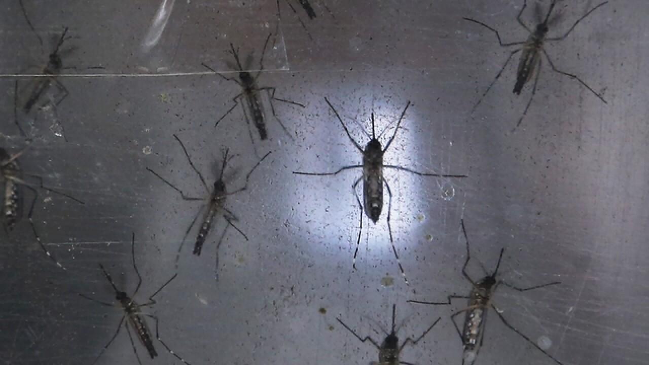 Zika virus causes MLB to relocate games