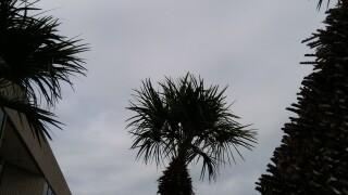 Cloudy 1.jpg