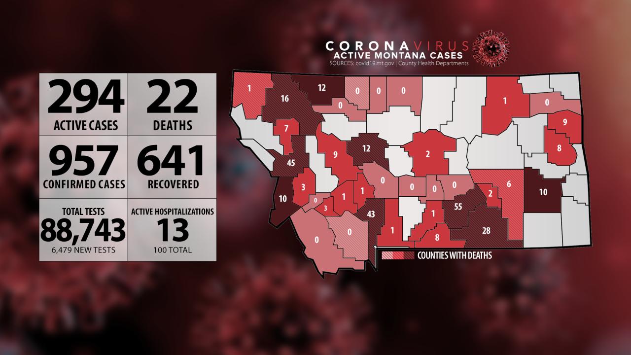 Montana Coronavirus 062920 Missoula.png