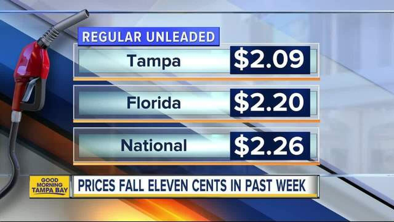 Gas Prices In Florida >> Florida Gas Prices Start Summer At 12 Year Low
