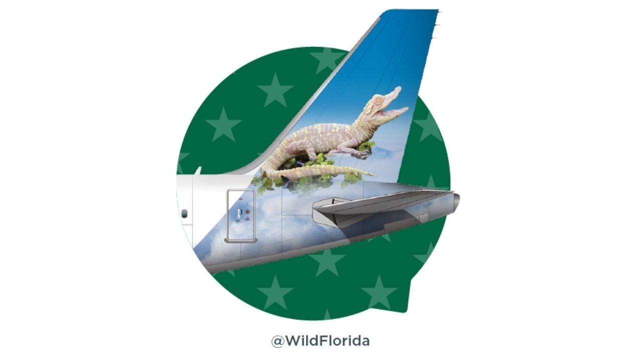 frontier airlines flurry.jpg