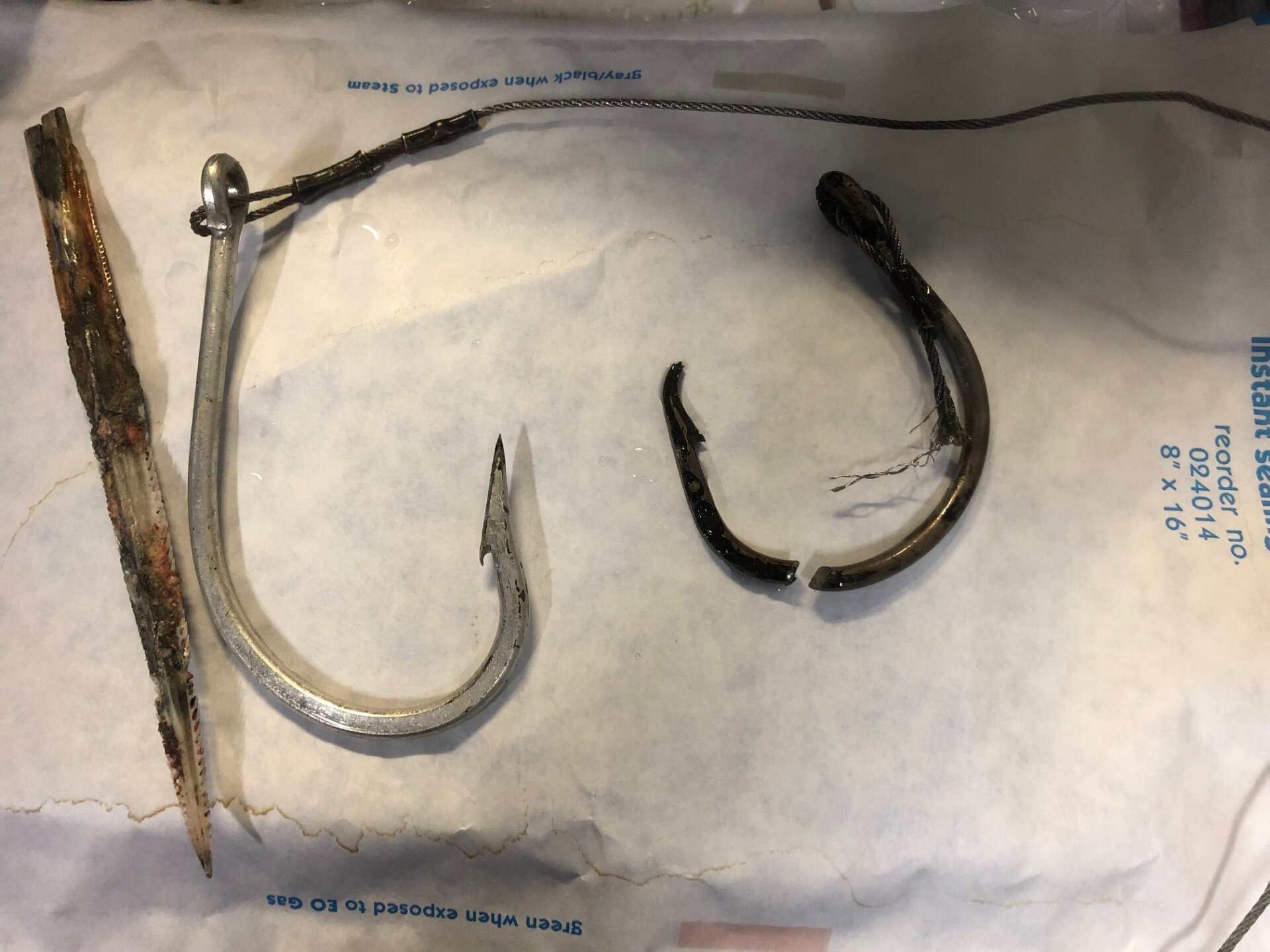 Photos: North Carolina Aquarium vet removes two fish hooks, stingray barb from loggerheadturtle