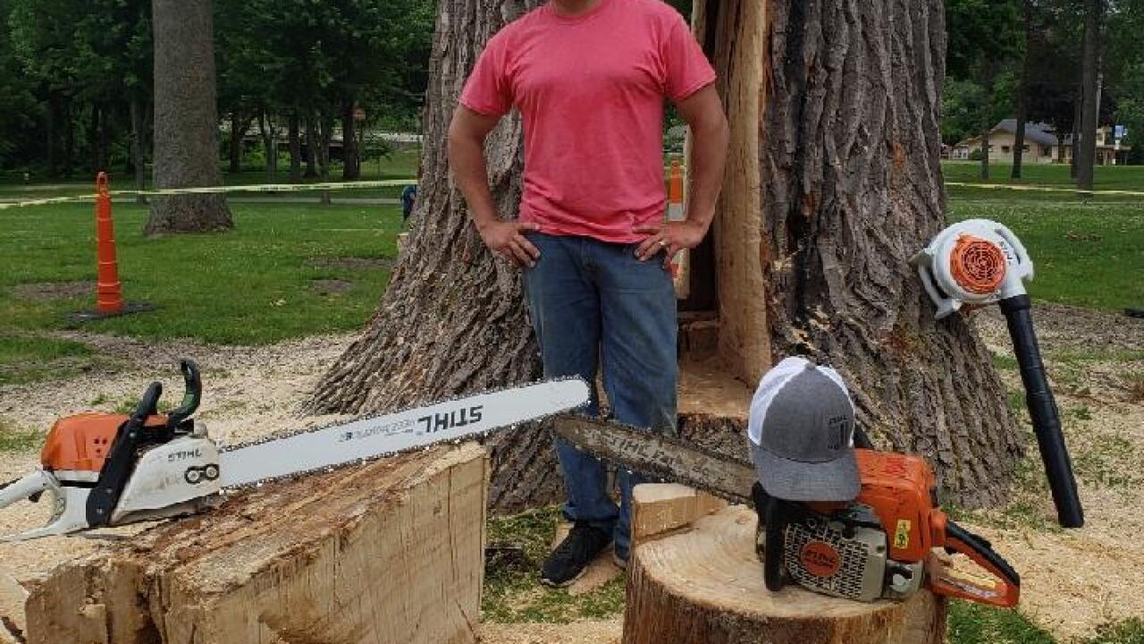 Jerald Miller working on Hastings tree