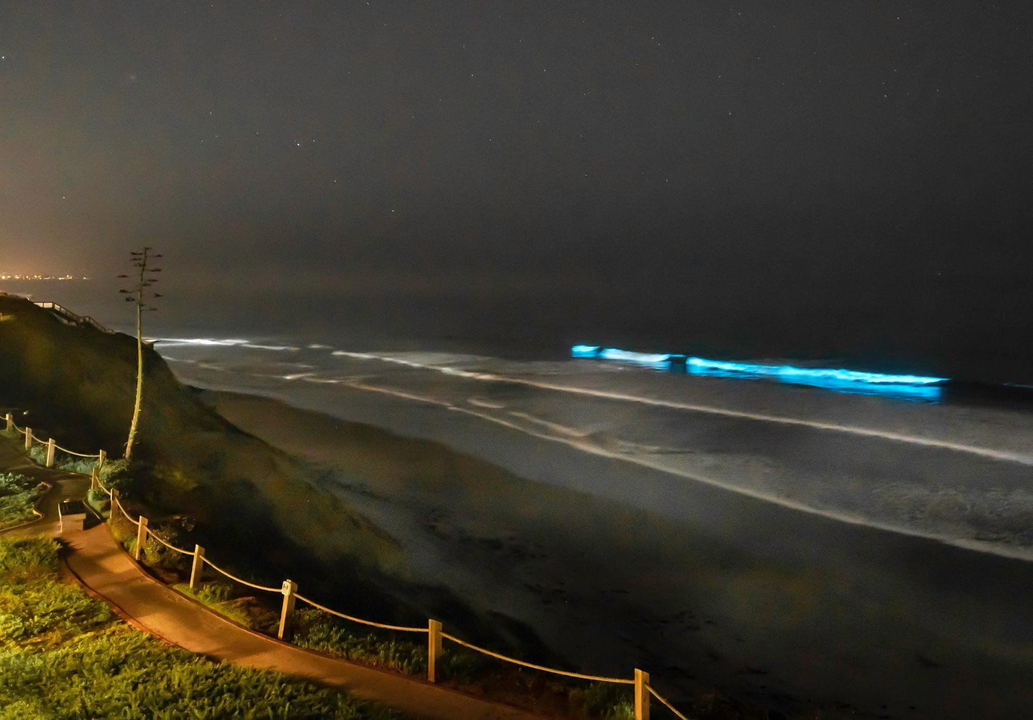 amy utter red tide weather watcher_2.jpg