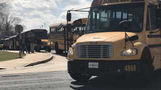 school buses.jpeg