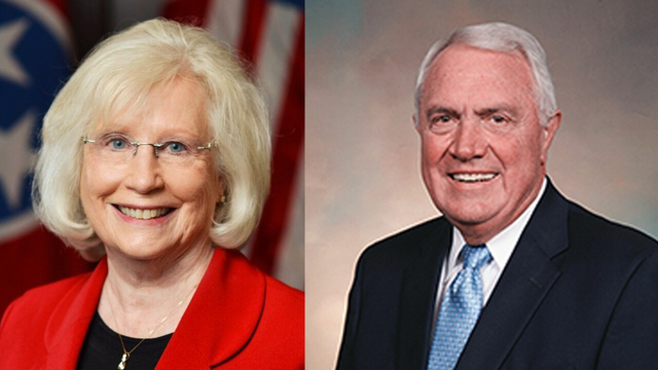 Longtime Politicians Fall Flat In Tennessee Primaries