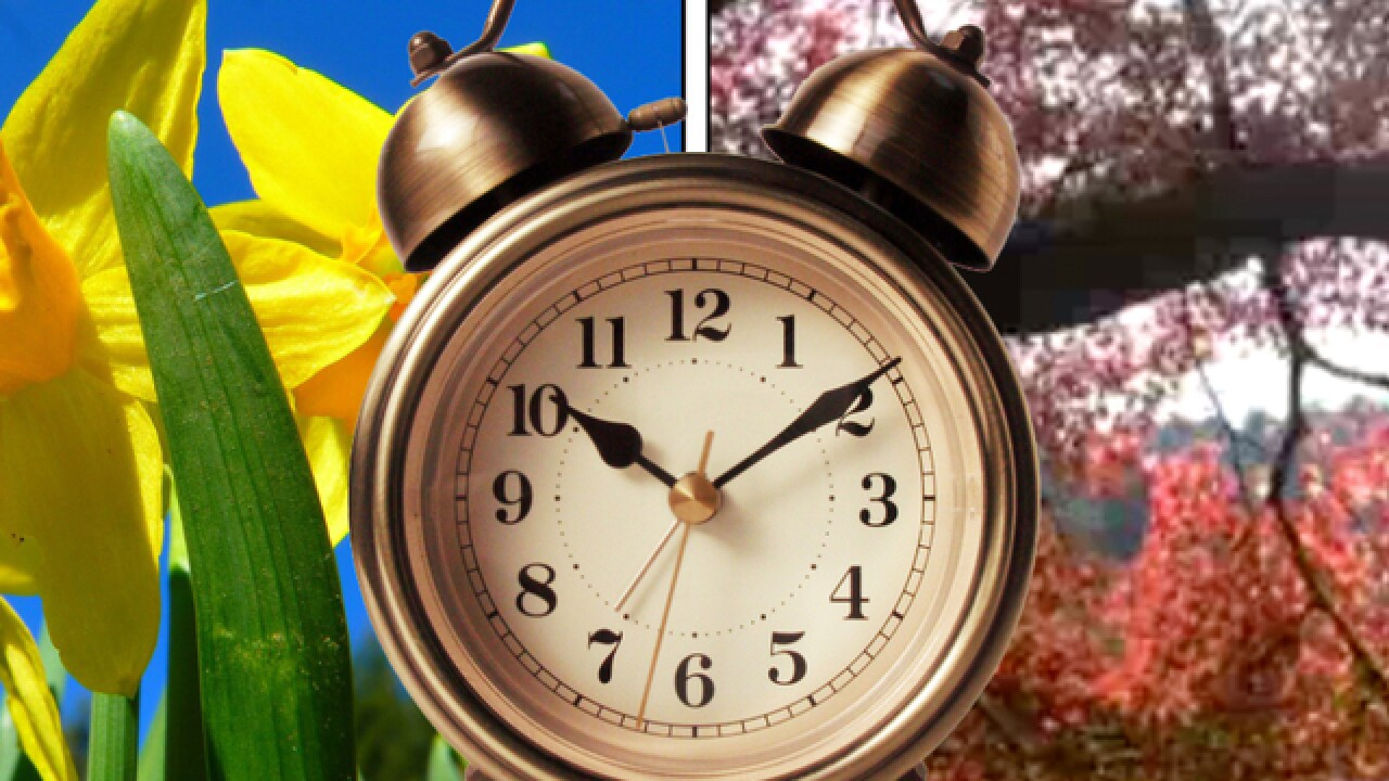 WATCH: The weird history behind Daylight Saving