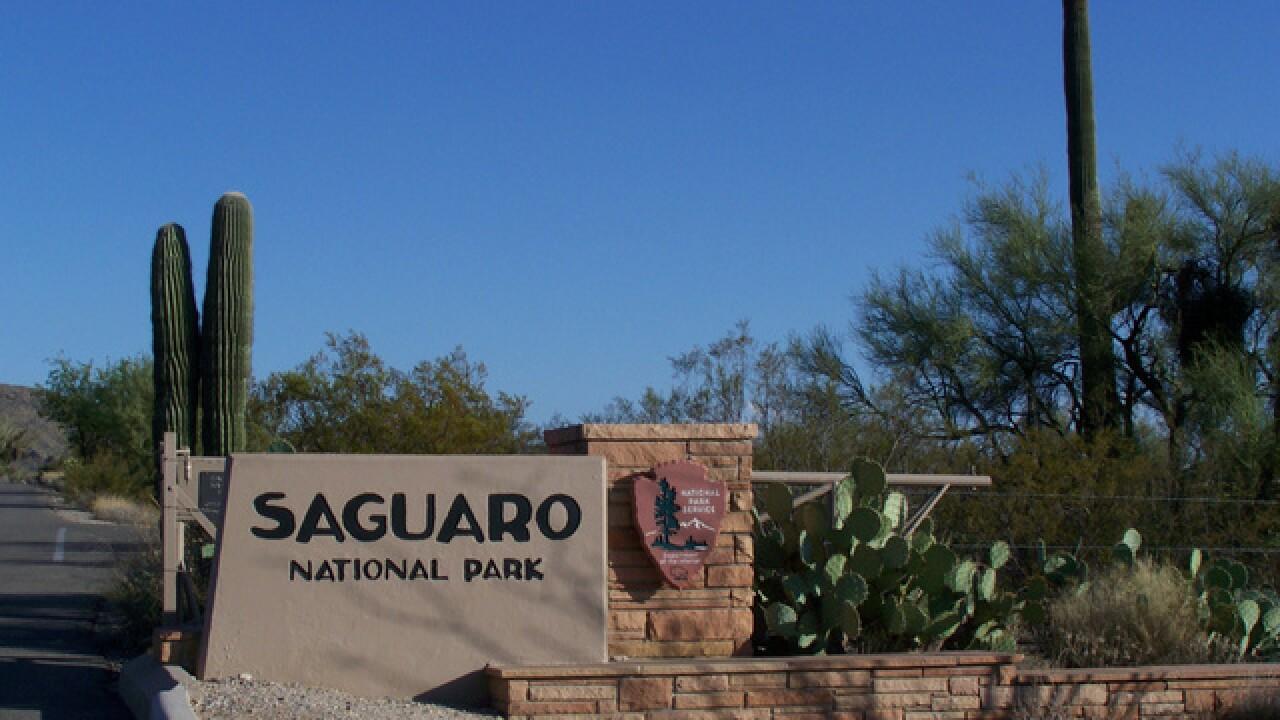 Non-profit to donate 282 acres for Saguaro National Park