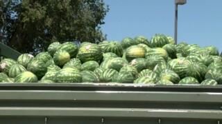 Watermelon Festival.jpg