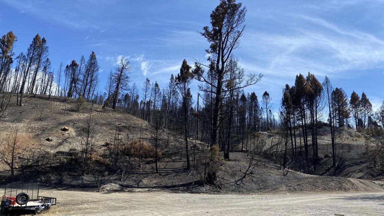 Deep Creek Fire Damage