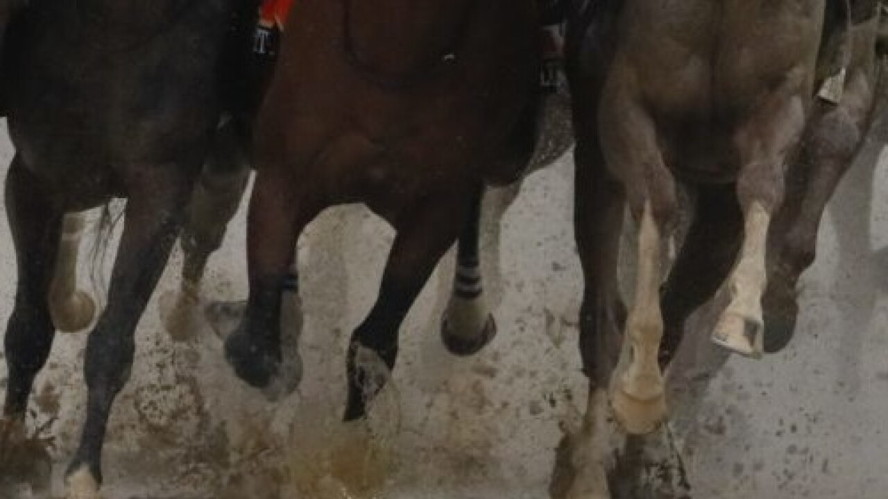 Kentucky Horse Racing Commission Makes Mortality Reviews Public For First Time