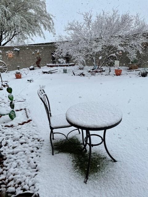 Rita Ranch Snow