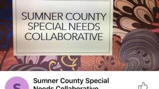 Sumner County special needs