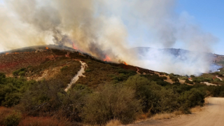 Fire near Lake San Antonio 80 percent contained