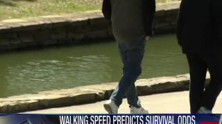 Study: Walking speed predicts survival rate of cancer patients