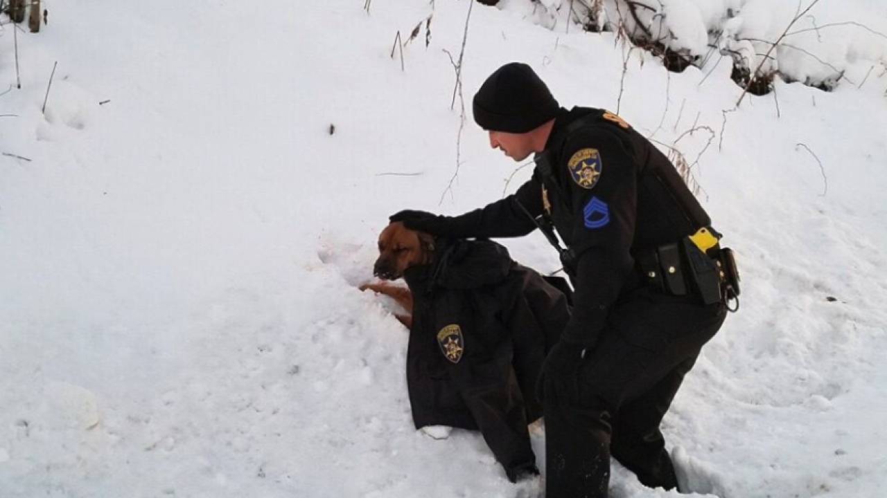 Chautauqua County sergeant covers dog with coat